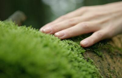 VILSA – Spür die Natur